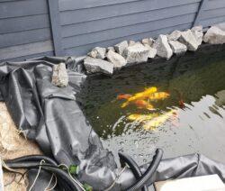 grav ud til en havebassin og lav en perfekt havedamskant og opmåling af havedam -