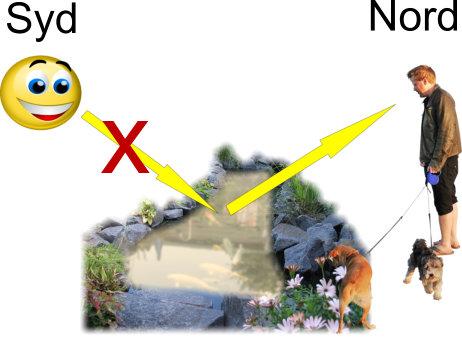 Placeringen af havedammen i haven