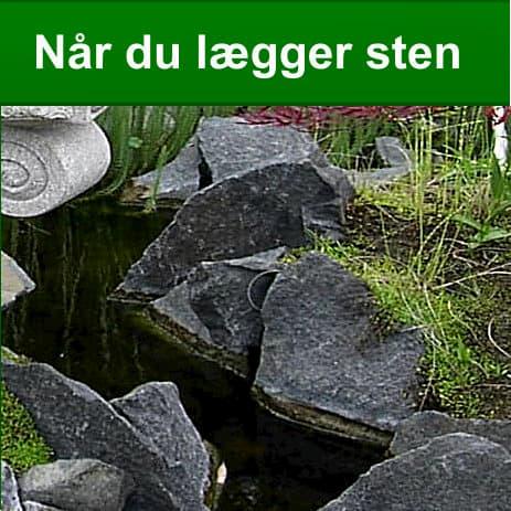 Sådan lægger du sten på havedams kant eller ved havedam når du lægger sten