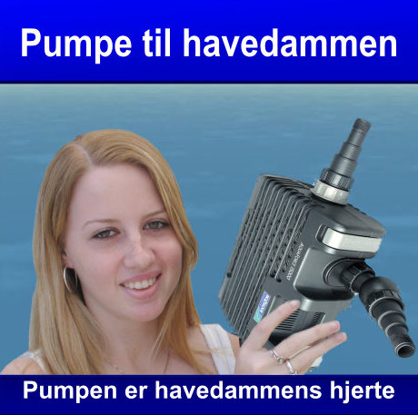Pumpe til havedam eller havebassin