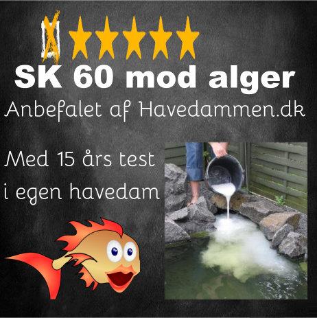SK60 mod alger