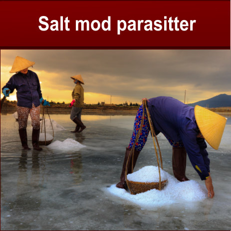 Salt - forebygger det mod parasitter