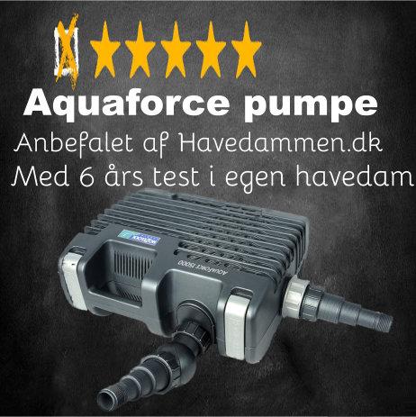 Test Aquaforce pumpe