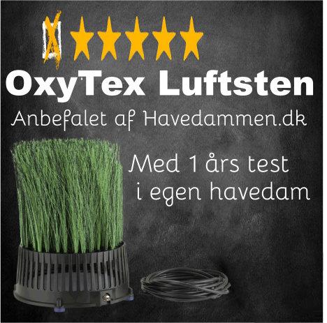 OxyTex Luftsten Test