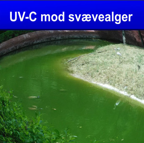 UVC MOD ALGER